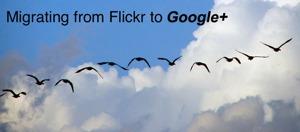 J'ai rêvé que Flickr était mort.