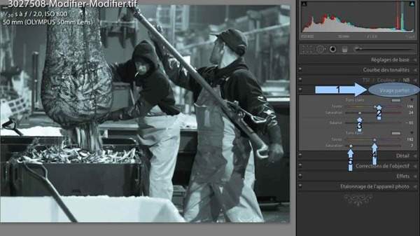 Réaliser des images en noir et blanc grâce à Lightroom